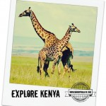 Explore Kenya | Country (Week 1)