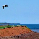 10 Best Places On Prince Edward Island